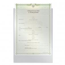 Папка-файл для свидетельства о рождении, 190х263 мм, без отверстий, 0,12 мм, 'ДПС', 1746